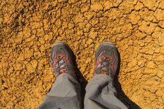 Feet in sneakers Royalty Free Stock Image