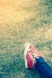 Feet in sneakers Stock Image