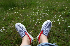 Feet in sneakers in green grass. Blue striped shoes in flower field Stock Image