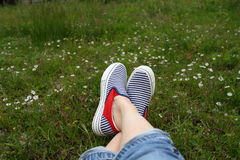 Feet in sneakers in green grass. Blue striped shoes in flower field Stock Photo