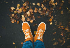 Feet sneakers walking on fall leaves Outdoor Stock Photos