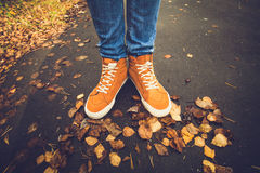 Feet sneakers walking on fall leaves Outdoor royalty free stock images