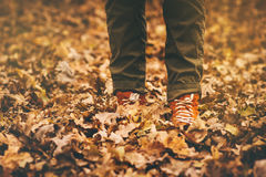 Feet sneakers walking on fall leaves Outdoor Royalty Free Stock Photo