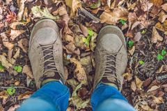 Feet sneakers walking on fall leaves in park with Autumn season nature on background Lifestyle Fashion trendy style Stock Photography