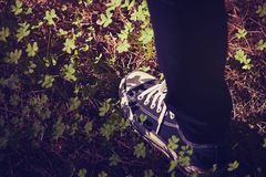 Feet in sneakers walking in the forest. Vintage tone. Detail of sneakers shoe in the middle of the countryside Royalty Free Stock Images