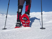 Feet in snowshoes. Stock Photo