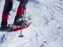 Feet in snowshoes. Royalty Free Stock Images