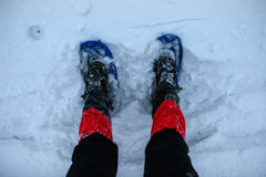 Feet in snowshoes on snow. Royalty Free Stock Photos