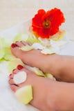 Feet spa Stock Photography