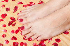Feet in spa Royalty Free Stock Photo