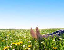 Feet on spring grass and flowers Stock Images