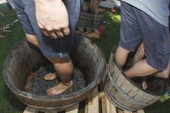 Feet stomping grapes royalty free stock photos
