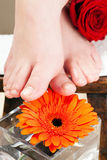 Feet on a stool Stock Photography