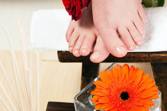 Feet on a stool Stock Photos