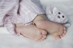 Feet of a toddler. Feet of a sleeping toddler Royalty Free Stock Photography