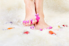 Feet in toe separators Stock Images