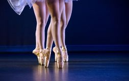 Feet of trio  of ballerinas on pointe. Staying on  dark blue floor Stock Images