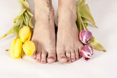 Feet and tulips Stock Photo