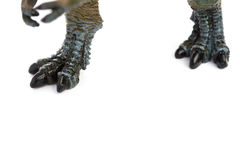 Feet of tyrannosaurus toy on white. Background Stock Image