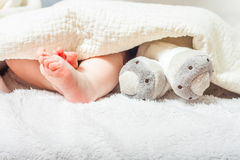 Feet under the blanket Stock Photography