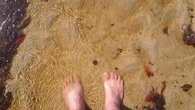 Feet under the water. In brazil, bahia, morro de sao paulo stock video