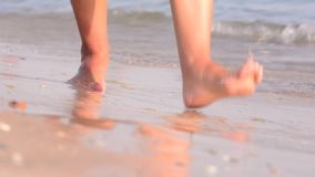 Feet, walking barefoot on wet sandy beaches. stock video