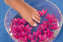 Feet in the water Royalty Free Stock Photo