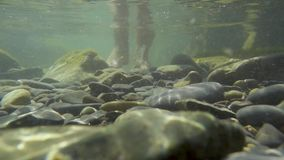 Feet in the water at the bottom of the stones slow mo. Female feet in the water at the bottom of the stones makes a step forward sunlight through the water slow stock footage