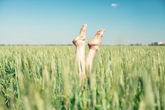 Feet in wheat Royalty Free Stock Photo