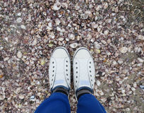 Feet in white sneakers. On the coast and among the many shells Stock Photography