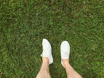 Feet in white sneakers on the grass. Outdoor Stock Photo