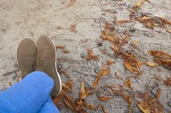 The feet of women wearing blue jeans and brown shoes resting comfortably. Autumn vacation concept. Female legs in blue jeans and brown shoes are stretched / royalty free stock photography