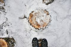 Feet on a wooden chock in the winter forest. Russia Royalty Free Stock Photo