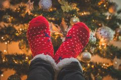 Feet with woolen christmas socks. Close up of feet wearing red Christmas socks against decorated Christmas tree background Stock Photography