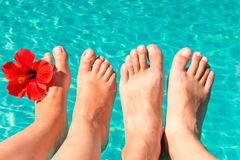 Feet of a young couple by the pool. With a red flower stock photos