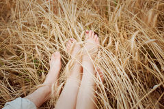 Feet of young romantic couples lying on a field with ears Royalty Free Stock Images