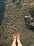 The feet of a young woman dipping into the sea royalty free stock photography