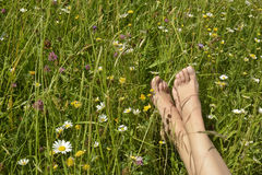 Feet of a young woman lying in a meadow Stock Photo