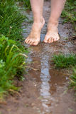 Feet of a young woman walking barefoot through the puddles after Stock Images