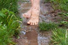 Feet of a young woman walking through the puddles after the rain Stock Photography