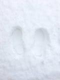 Feetprint στο χιόνι Στοκ φωτογραφία με δικαίωμα ελεύθερης χρήσης