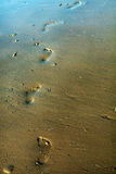 Feetprints sur le sable 1 Photo libre de droits