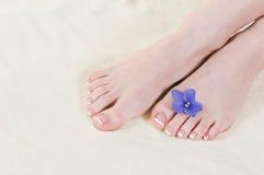 feets fotografering för bildbyråer