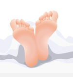 Feets Stock Image