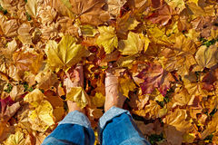 Feets ins autumn leaves Stock Photo