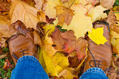 Feets ins autumn leaves. Man in standing in autumn leaves Royalty Free Stock Photo
