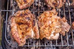 Feg biff på gallret Laga mat höna på grillfesten med kol i trädgård royaltyfria bilder