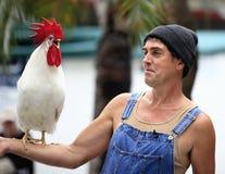 feg clucky mr rooster Fotografering för Bildbyråer