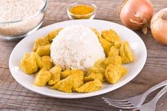 Feg curry med karibiska ris Royaltyfria Foton