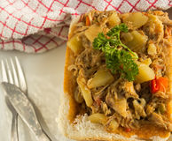 Feg currykaninkäk Royaltyfri Fotografi